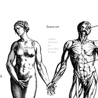 percuss-lumen 10-surface anatomy-v2.3